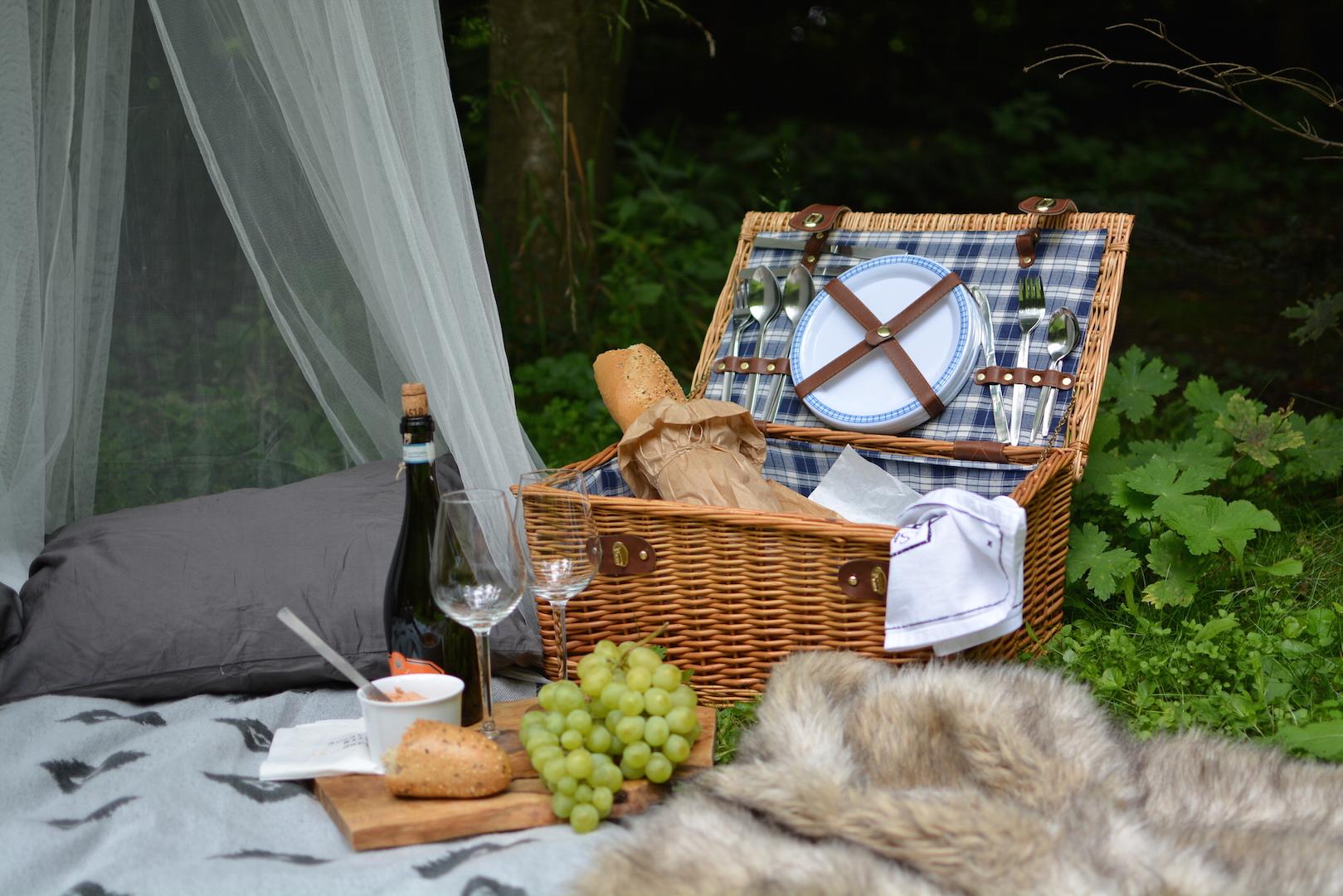 piknik-w-lesie-kosz-piknikowy-2