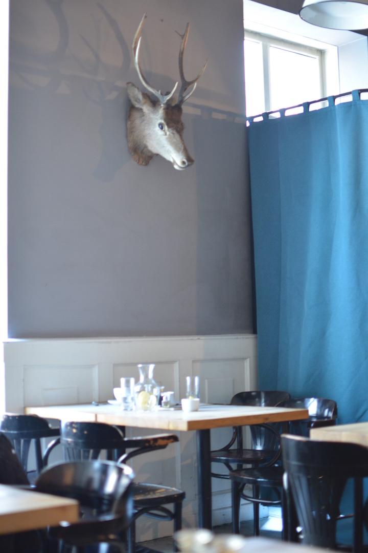 alchemia od kuchni, gdzie jeść Kraków, restauracja na Kazimierzu, bistro