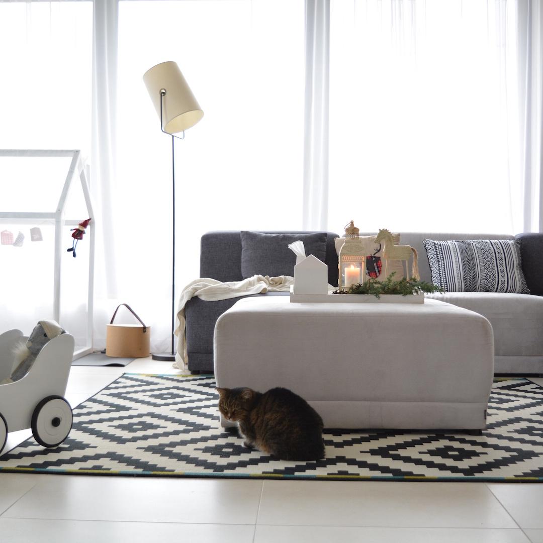zachwyty stycznia, przyjemnośc, dom z charakterem 2, domy z wizją, projekty z wizją, skandynawski salon , sofa modułowa