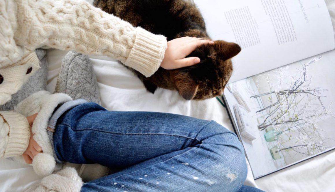 zachwyty lutego, przyjemności luty, luty, co nowego, koniec zimy, kot, kicia
